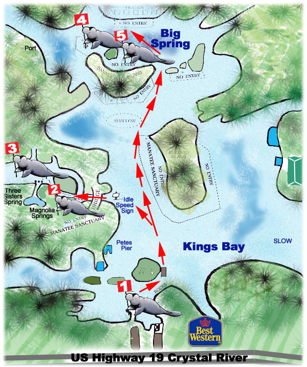Map And Directions To Crystal Lodge Dive Center In Crystal River Florida